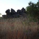 Kimberley grass & boulders
